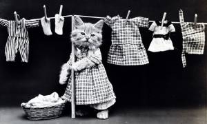 Как выбрать антистатик кондиционер для одежды и белья